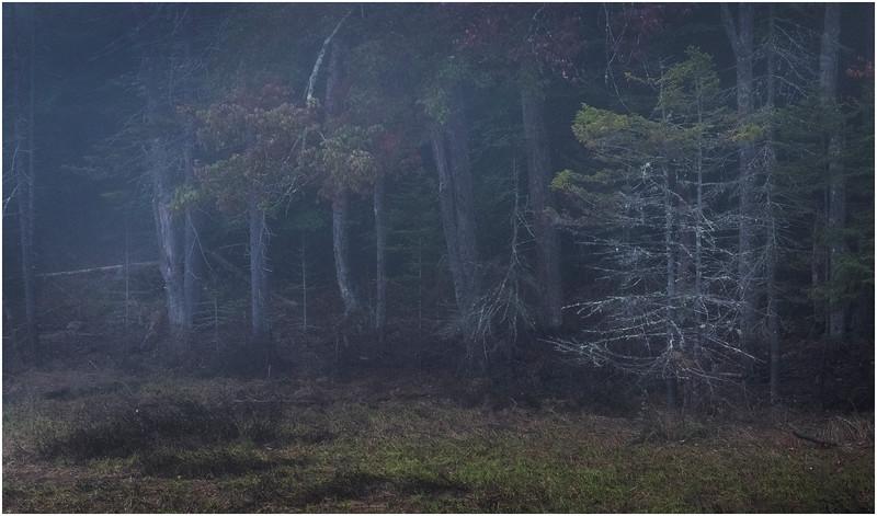 Adirondacks Cary Lake Morning Mist 67 September 2017