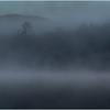Adirondacks Forked Lake July 2015 Morning Mist Emerging Shore 2