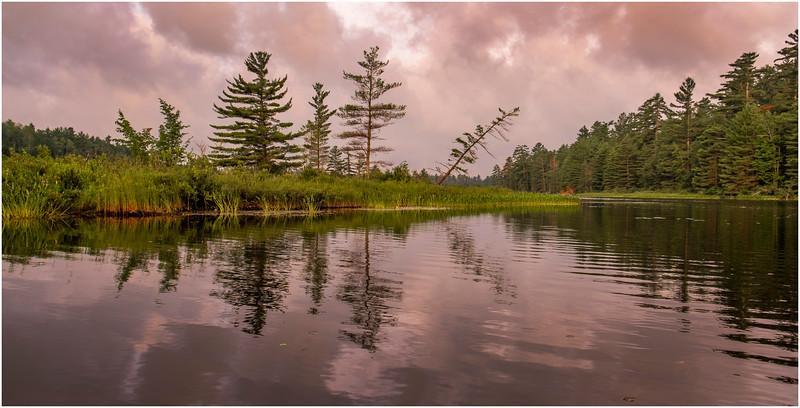Adirondacks Bog River Morning 12 July 2019