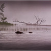 Adirondacks Chateaugay Lake Duck Island Bay 7 July 2016
