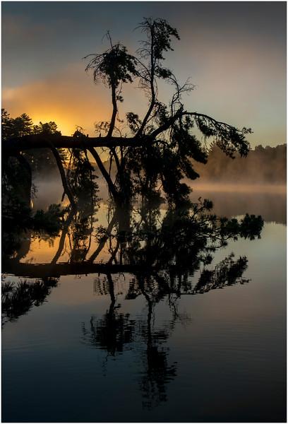 Adirondacks Lake Rondaxe Sunrise 14 July 2016