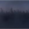 Adirondacks Forked Lake July 2015 Morning Mist Emerging Shore