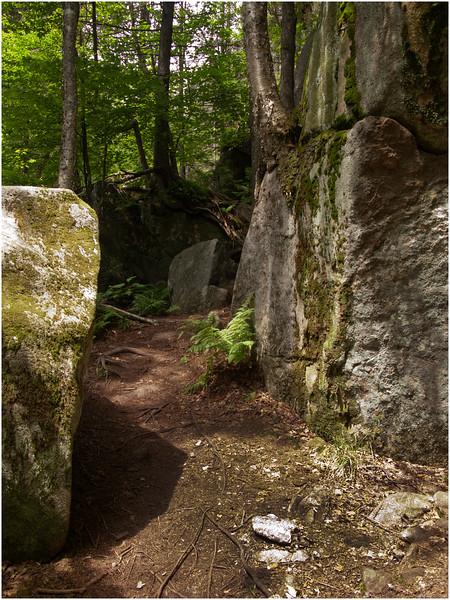 Adirondacks Chimney Mountain Trail July 2009