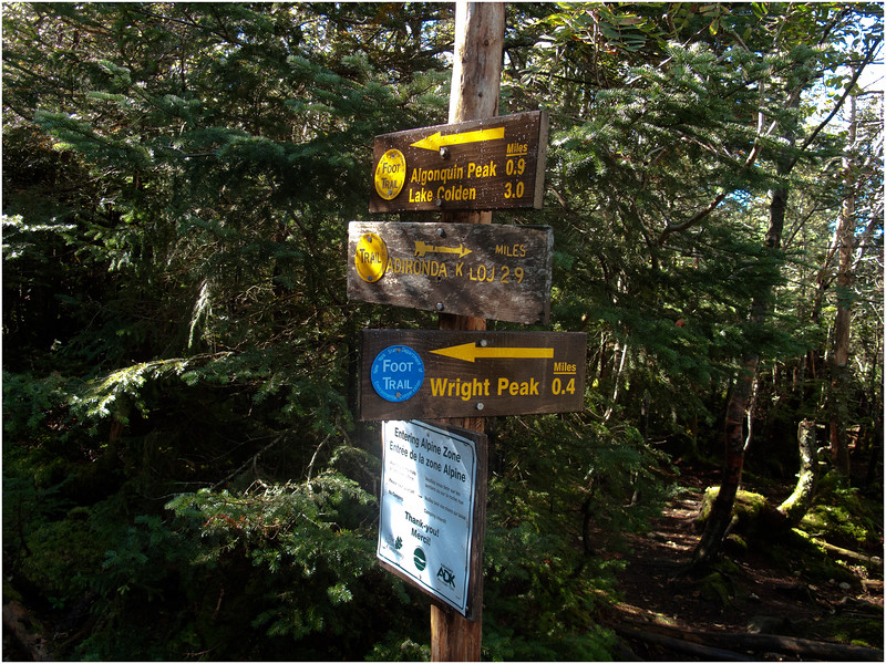 Adirondacks Algonquin Signposts at Wright Peak Turnoff September 2010