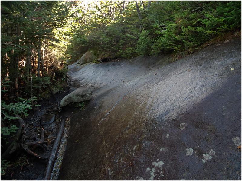 Adirondacks Algonquin Trail Below Wright peak Turnoff September 2010