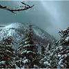 Adirondack Classics North Colden from Mt  Colden Summit Trail circa 1981