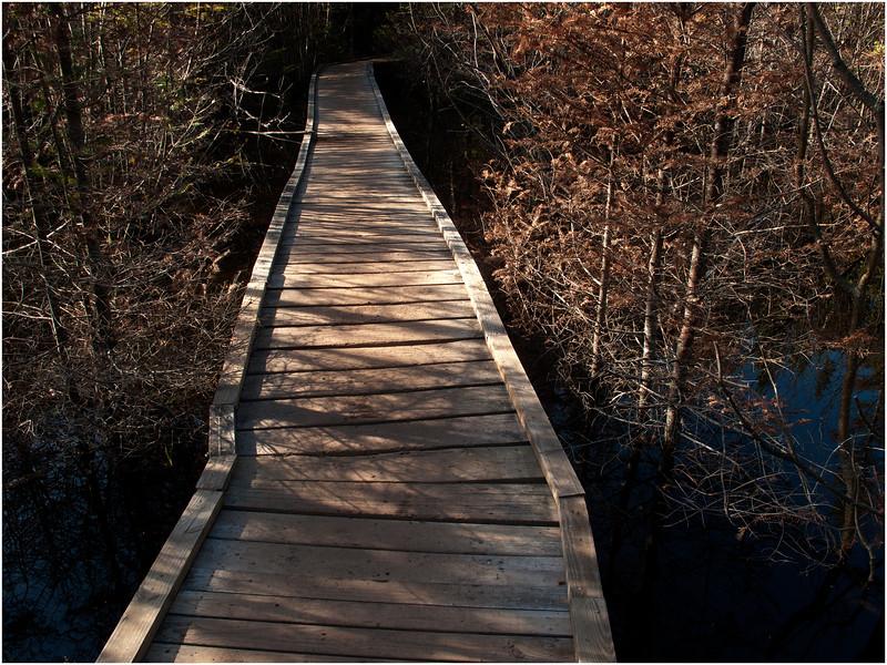 Adirondacks Algonquin Trail Catwalk over Beaver Vlei September 2010