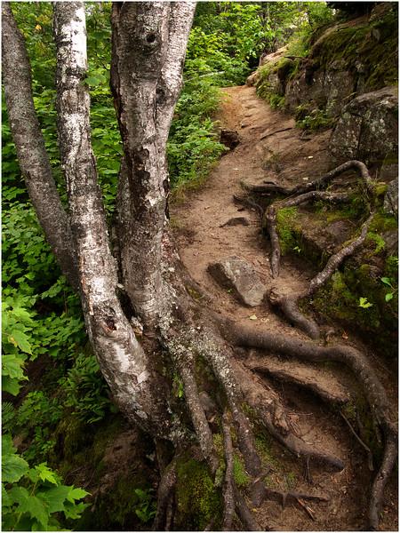 Adirondacks Chimney Mountain Trail 3 July 2009