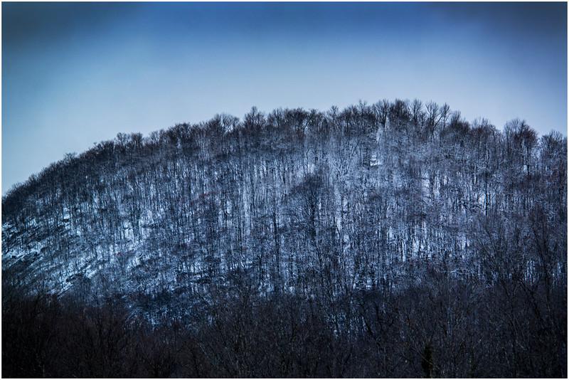 Adirondacks Indian Lake Raquette Brook Hillside 1 December 2016