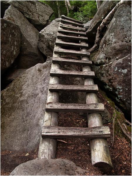 Adirondacks Avalanche Pass Trail Ladder July 2012