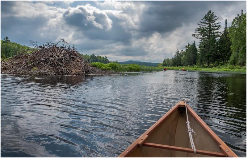 Adirondacks Big Brook 3 July 2019