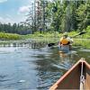 Adirondacks Little Square Pond 1 July 2019