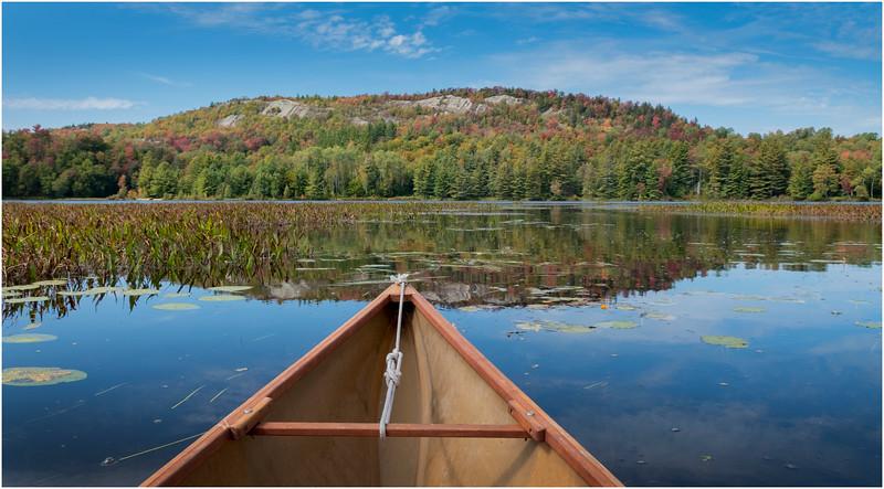 Adirondacks Bog River Hitchins Pond Lows Ridge 24 September 2019