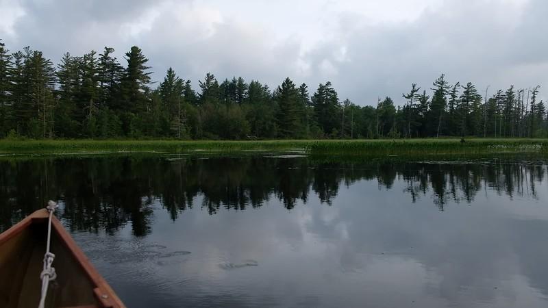 Adirondacks Bog River Morning 10 July 2019