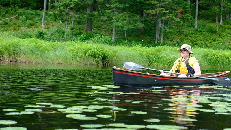 Adirondacks Big Brook 4 July 2019