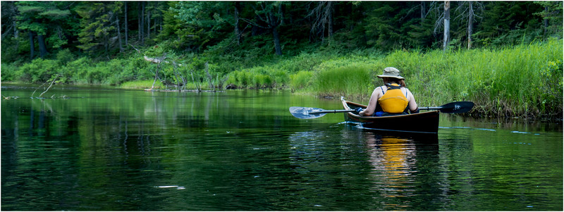 Adirondacks North Branch Moose River Kim 1 July 2016