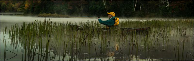 Adirondacks Cedar River Flow September 2015 Rick Rosen Paddling in the Reeds 2