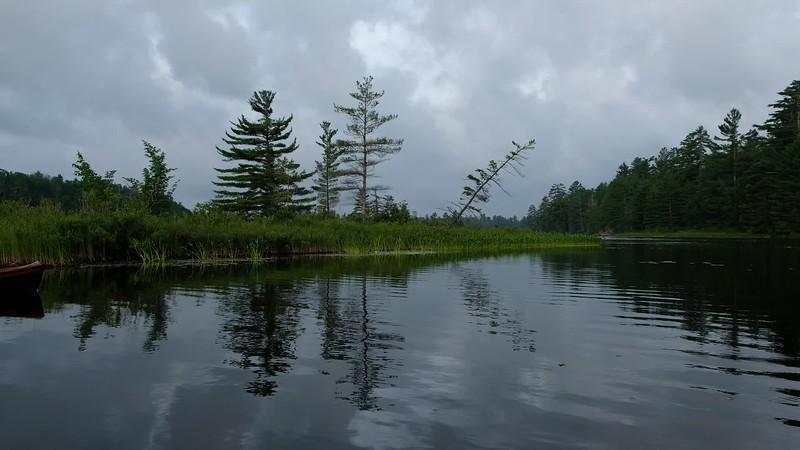 Adirondacks Bog River Morning 13 July 2019