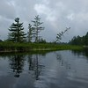 Adirondacks Bog River Morning 13 July 2019