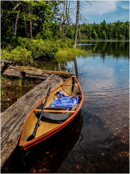 Adirondacks St Regis Slang Pond and Hornbeck July 2009