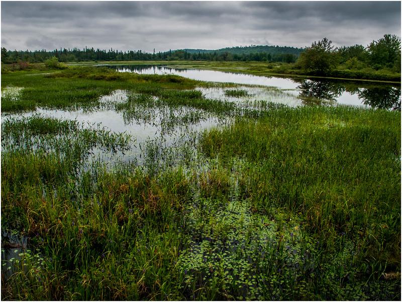 Adirondacks Raquette River Oxbow near Wild Center July 2012