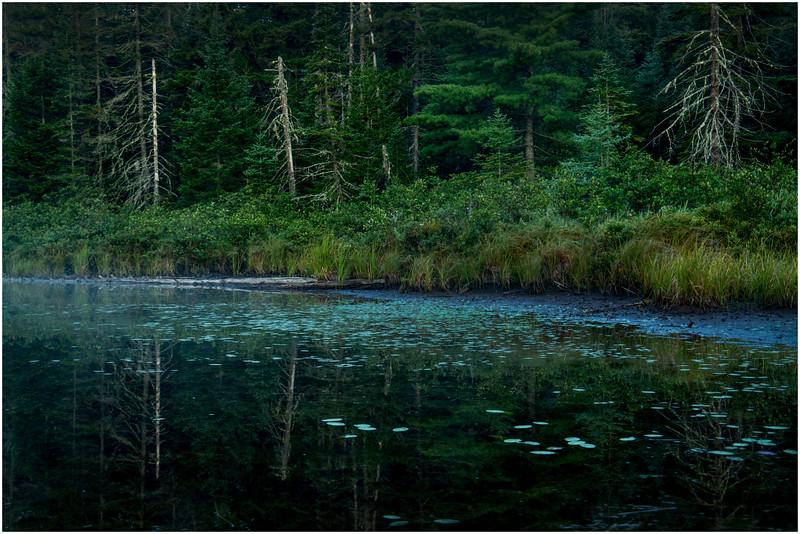 Adirondacks Forked Lake Morning Light 8 August 2016