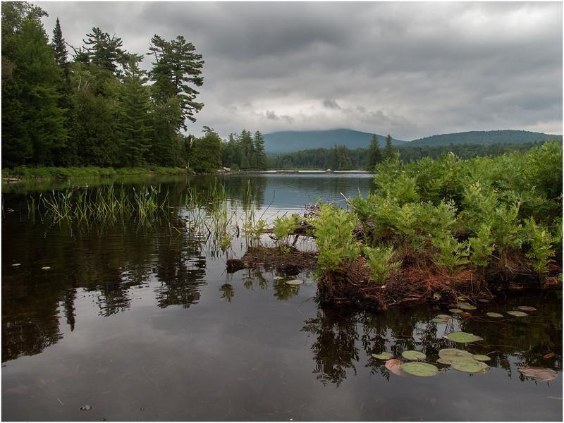 Adirondacks South Pond Scene July 2011