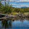 Adirondacks Cedar River Flow Shoreline 6 September 24 2016