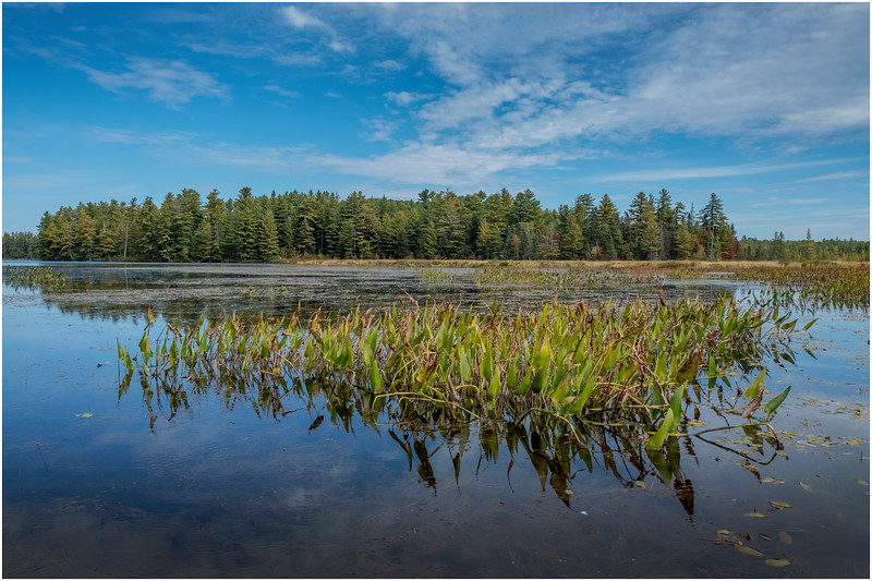 Adirondacks Bog River Hitchins Pond 25 September 2019
