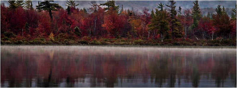 Adirondacks Whitney Wilderness Round Lake Shore and Reflection 6 September 2013