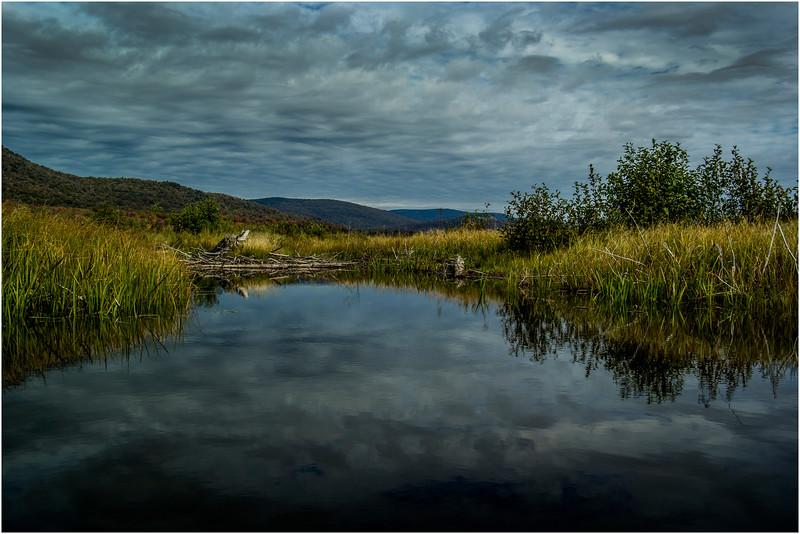 Adirondacks Cedar River Flow September 2015  Early Morning 11