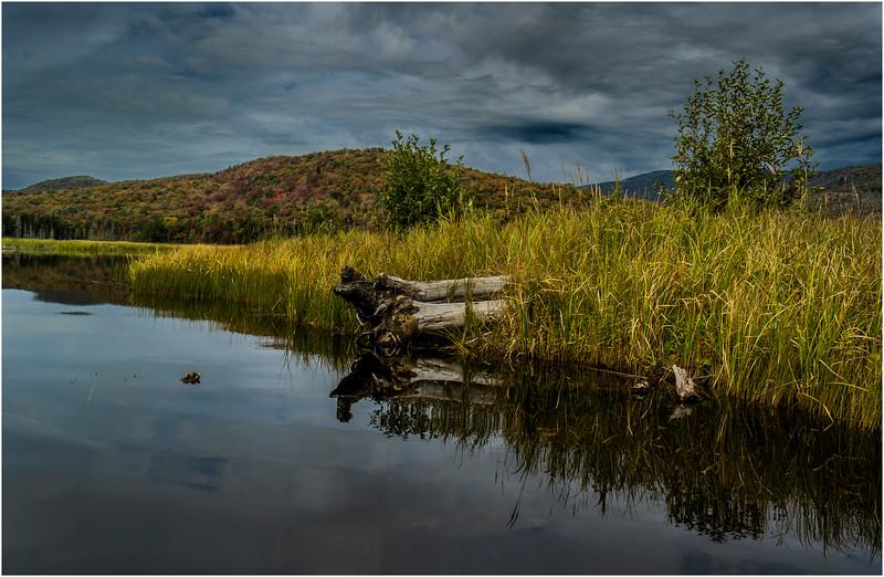 Adirondacks Cedar River Flow September 2015  Early Morning 10