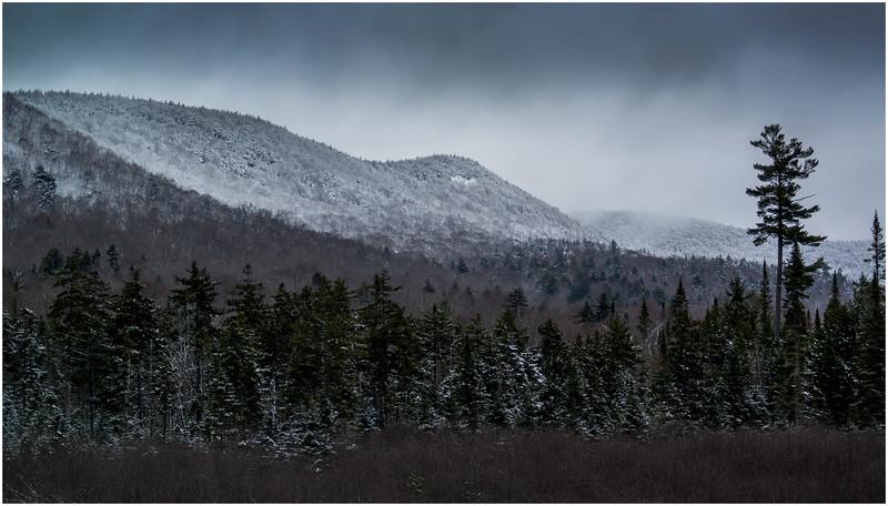 Adirondacks Long Lake Roadside Hillside 2 December 2016