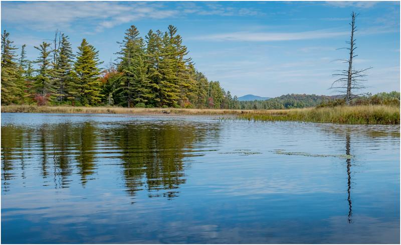 Adirondacks Bog River Hitchins Pond 27 September 2019