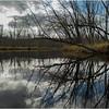 Adirondacks Raquette River Near Axton 2 October 2012