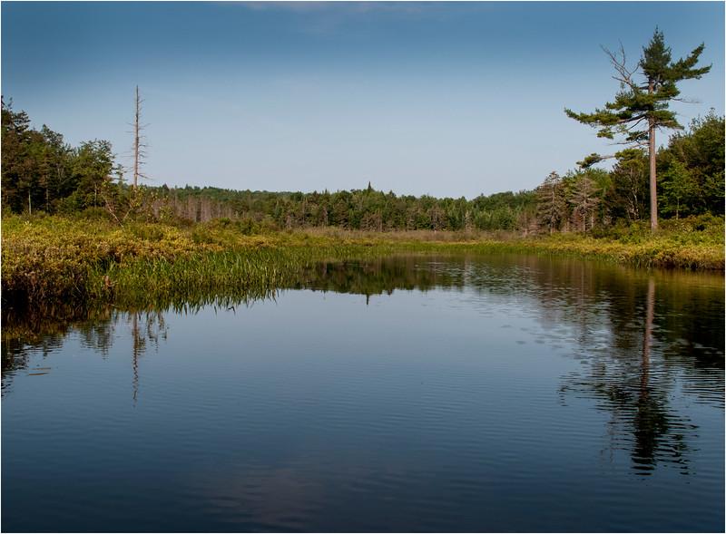 Adirondacks Little Tupper Lake July 2015  North Inlet