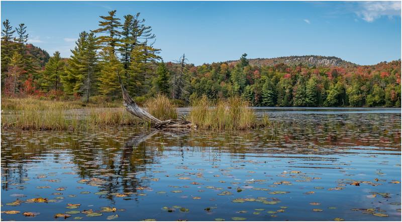 Adirondacks Bog River Hitchins Pond 34 September 2019