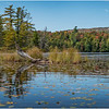 Adirondacks Bog River Hitchins Pond 34 September 2019