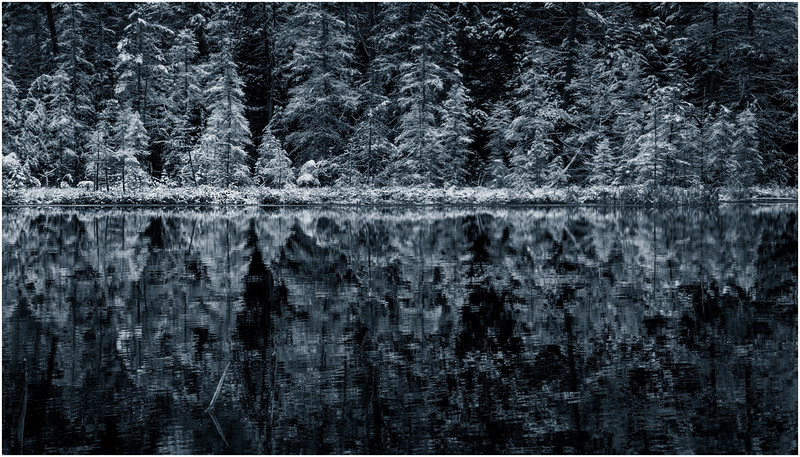Adirondacks Follensby Clear Pond 4 DUO December 2016