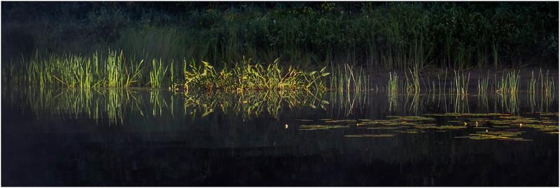 Adirondacks Rollins Pond Morning 39 August 2019