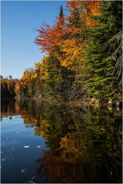 Adirondacks Lake Abanakee October 2015 Shoreline 2