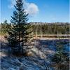 Adirondacks Long Lake November 2015 Wetlands at Sabattis Road 4