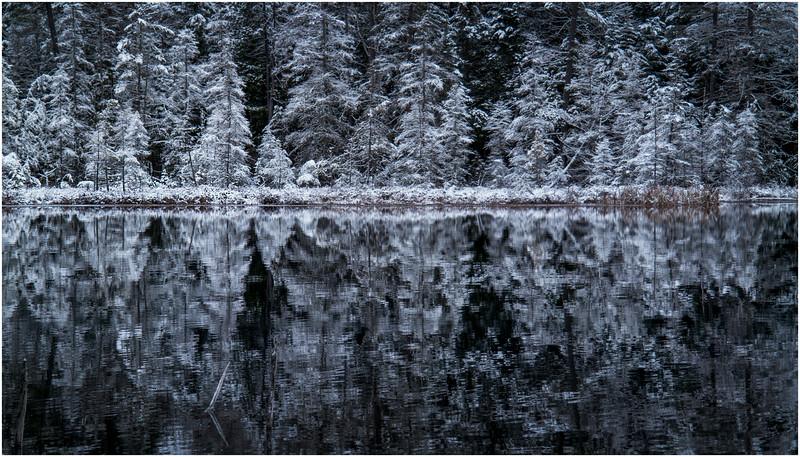 Adirondacks Follensby Clear Pond 4 December 2016