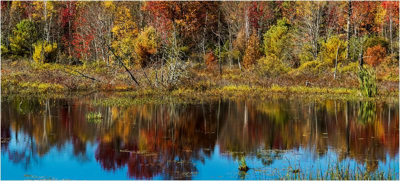 Adirondacks Chestertown October 2015 Wetlands Above Exit 25 2
