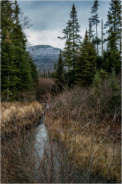 Adirondacks Long Lake November 2015 Blue Ridge 6