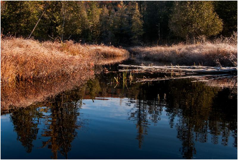 Adirondacks Marion River in Frost 3 October 2009