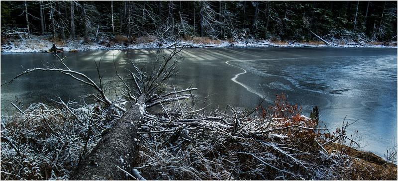Adirondacks Long Lake November 2015 Wetlands at Sabattis Road 12