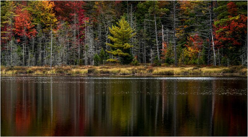Adirondacks Whitney Wilderness Round Lake Color Shoreline 2 September 2013
