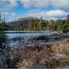 Adirondacks Long Lake November 2015 Wetlands at Sabattis Road 5