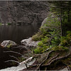 Adirondacks Avalanche Lake Shoreline Colden Cliffs 4 July 2012